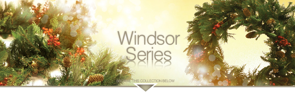 Windsor Series